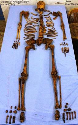 Скелет фараона Сенебкая.
