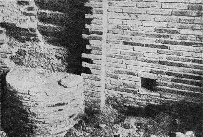 Рис. 18. Смоленск. Петропавловская ц. 1146 г. Часть полуколонны пилястры