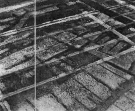 Аэрофотосъемка. Черные полосы - улицы этрусской Спины