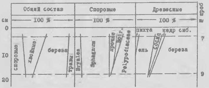 """Рис.З. Спорово-пыльцевая диаграмма по разрезуу за пределами поселения. Примечание: в графе """"споровые прочие"""" включены споры плауна и папоротника."""