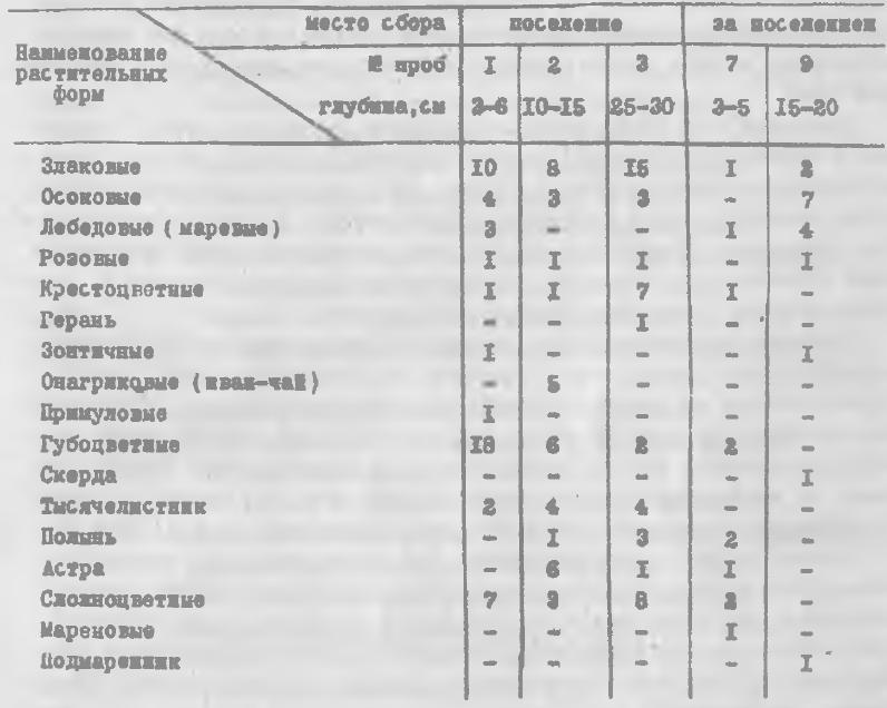 Таблица 2. Состав травянистых растений в спорово-пыльцевых комплексах поселения Шеломок-II