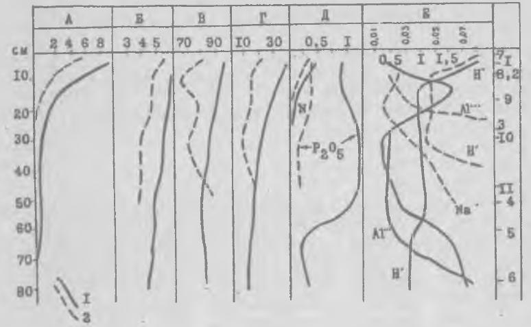 Рис. 1. Совмещенный график химического состава почв поселения Шеломок-II. I - почва - культурный слой поселения; 2 - почва за пределами поселения; А - гумус, по Тюрину,%; Б - pH; В - степень насыщения основаниями;%; Г - сумма поглощенных оснований, мг/100 г; Д - валовые азот и фосфор,%; Е - поглощенные ионы, мг-экв.