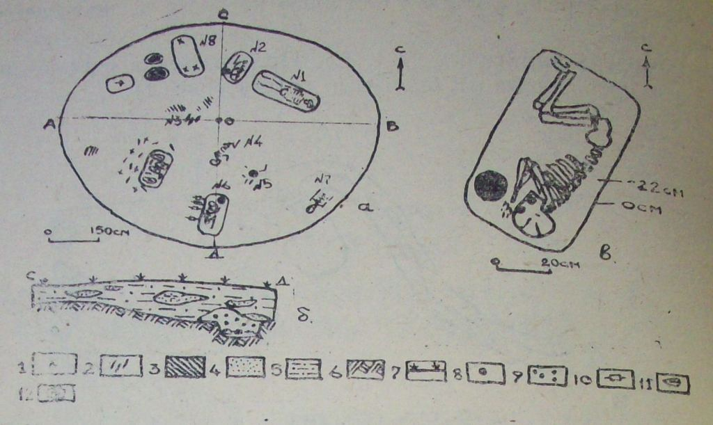 Рис. 2. Курган № 8: а) план раскопа кургана; б) разрез кургана по линии СД; в) могила № 2; 1 — обломки керамики; 2 — кости животных; 3 — жженые пятна; 4 — супесь светлая; 5 — супесь темная; 6 — материк, глина; 7 — дерн; 8 — сосуд; 9 — комья глины; 10 — позвонки животного; 11 — черепа: 12 — яма с глиняной обмазкой.