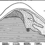 Рис. 15. Разрез вершины вала напротив Шатрищенской школы в Старой Рязани. 1 — красная глина; 2 — желтая глина; 3 - земля с вкрапл. красной глины; 4 — черная земля; 5 — дерево; 6 — дерн; 7 — бревна; 8 — кусок дерева
