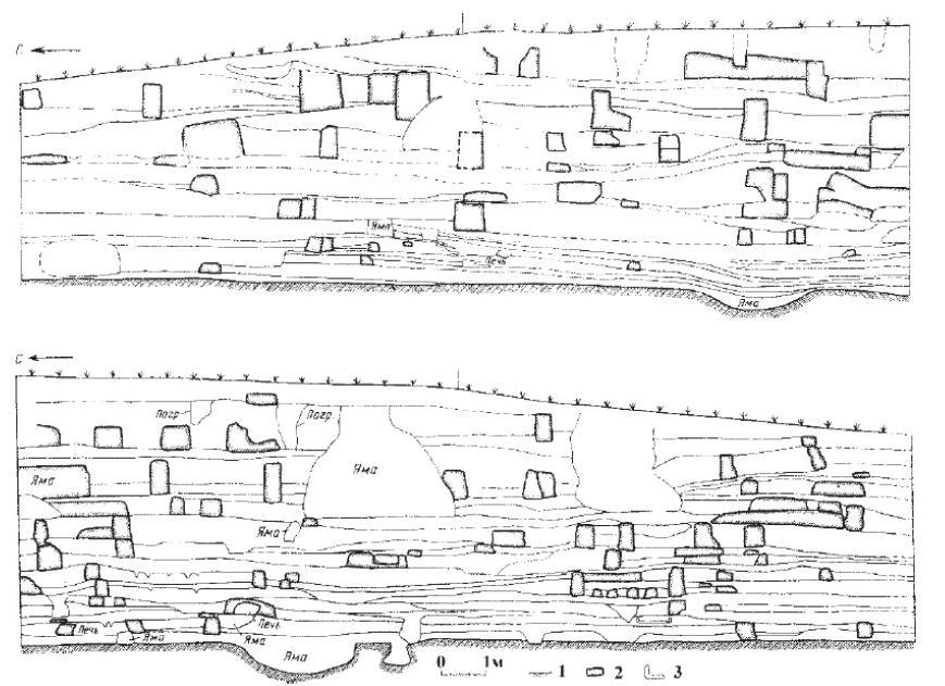 Рис.15. Разрез по линии «север-юг» культурного слоя поселения Ярымтепе I, середина VI - начало V тыс. до н. э., Ирак; 1 - полы и границы ям, 2 - остатки стен, 3 - печи.