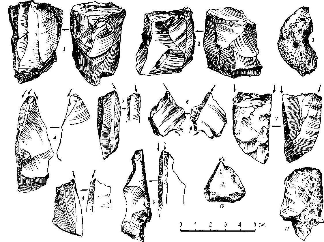 Рис. 33. Кремневые орудия из д. Сучкино.