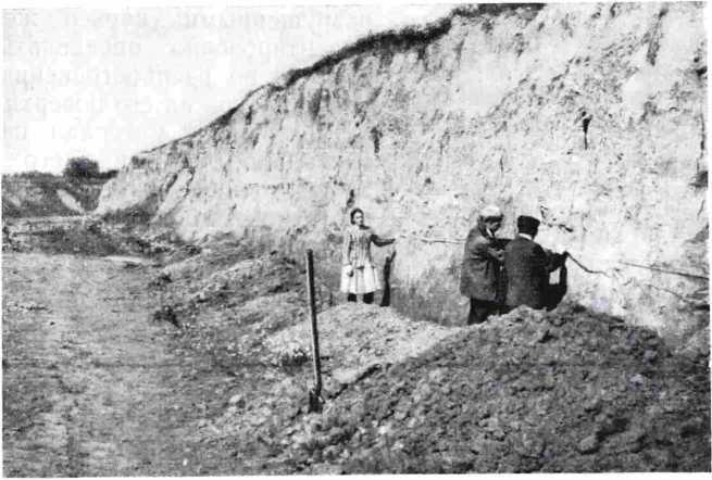 Рис. 2. Фиксация обнажения северо-восточной стенки карьера в районе наибольшей интенсивности культурного слоя