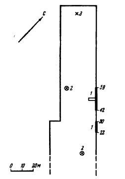 Рис. 3. Схематический план очертаний карьера в сентябре 1956 г. с обозначением раскопок (1), отдельных находок костей in situ (2) и на поверхности дна карьера (3)