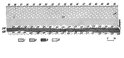 Рис. 4. Разрез по северо-восточной стенке карьера на участках Ю/59—42. I — суглинок коричневый; II — суглинок темно-желтый; III — культурный слой; IV — серо-желтая супесь