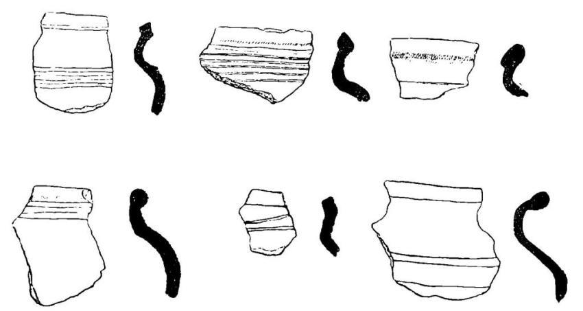 Рис. 59. Суздаль. Характерные образцы керамики типа 1.
