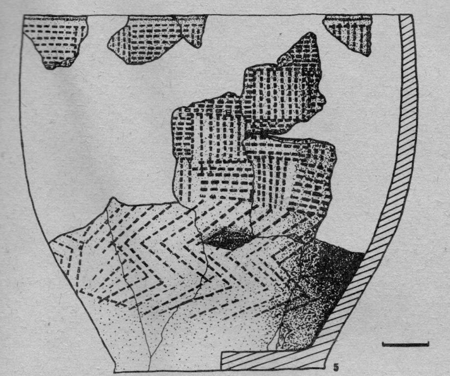 Рис. 4. Фрагменты сосудов поселения на Тамбарском водохранилище