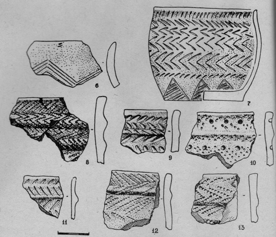 Рис. 5. Керамика поселения на Тамбарском водохранилище.