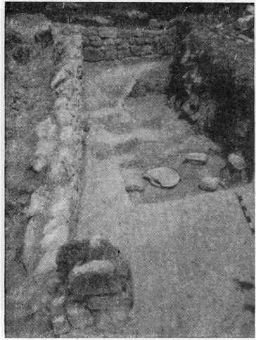 Рис. 5. Вырубка в скале с установленными с установленными в ней пифосами