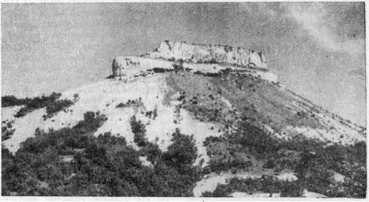 Рис. 1. Общий вид горы Тепе-Кермен и плато, на котором расположено городище