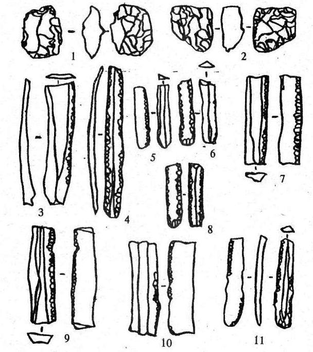 Рис. 11. Тип-лист. Ретушеры (1, 2); пластины с ретушьк (3-11). 1,2 - 2.1.2; 3 - 2.2.1; 4 - 2.2.2; 5 - 2.2.3; 6 - 2.2.4; 7 - 2.2.5; 8 - 2.2.7; 9 - 2.2.6; 10 - 2.2.6.1: