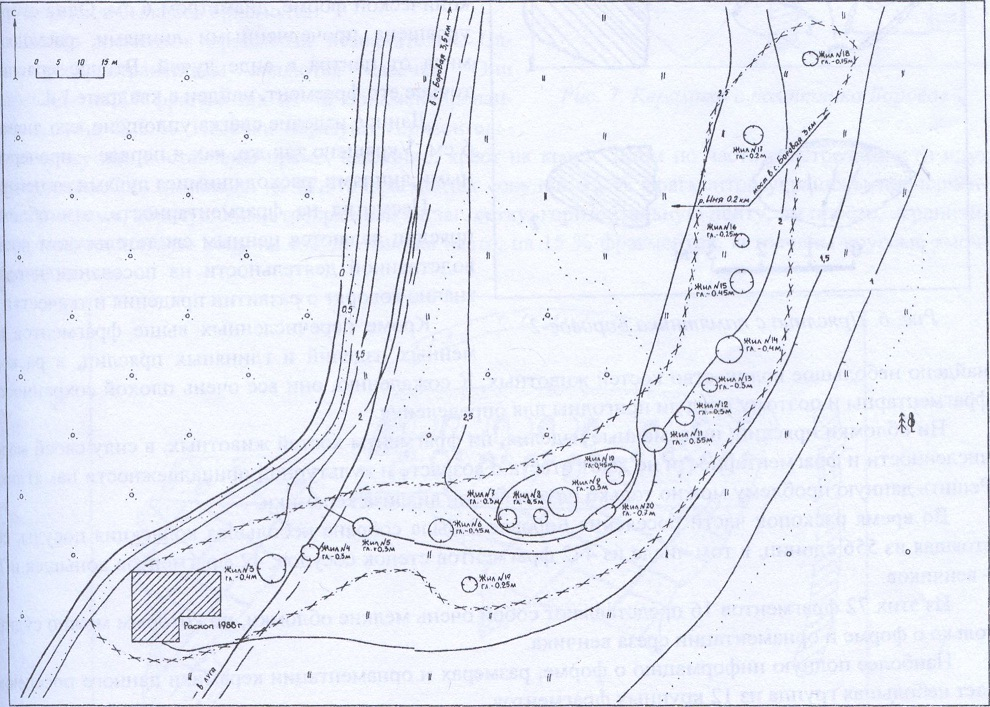 Рис. 5. План археологического памятника Боровое-2
