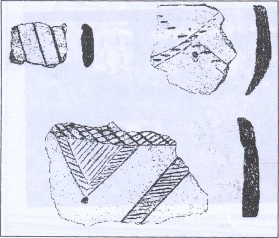 Рис. 29. Керамика с памятника Иня-12. Хранится в НОКМ