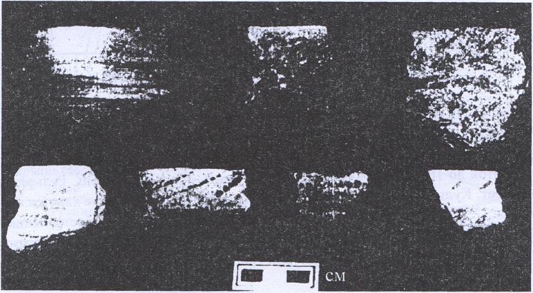 Рис. 40. Керамика с памятника Куделька. НОКМ2003