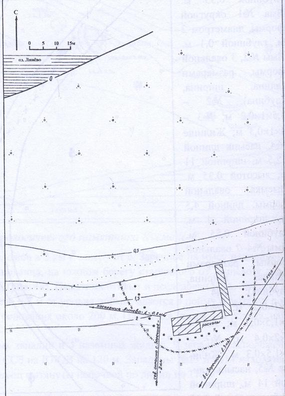 Рис. 46. План археологического памятника Линёво-4