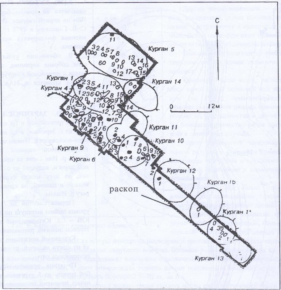 Рис. 12. План раскопа курганного могильника Заречное-1