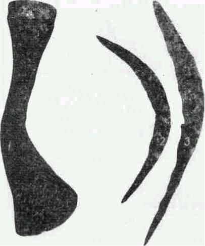 Железный топор (1), серпы (2, 3) и наконечник копья (4) из поселений культуры штрихованной керамики. (Раскопки А. Г. Митрофанова.)