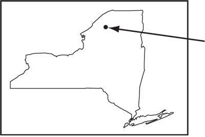 д — карта, показывающая нужный район