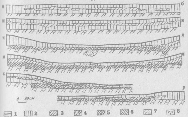 Рис.4. Стратиграфия раскопа жилица I поселения Венгерово-2. 1 - дерн; 2 - черная суглинистая супесь; 3 - темно-желтая суглинистая супесь; 4 - материк - желтый суглинок; 5 - красноватый суглинок; 6 - серая супесь; 7 - пепел; 8 - прокал.