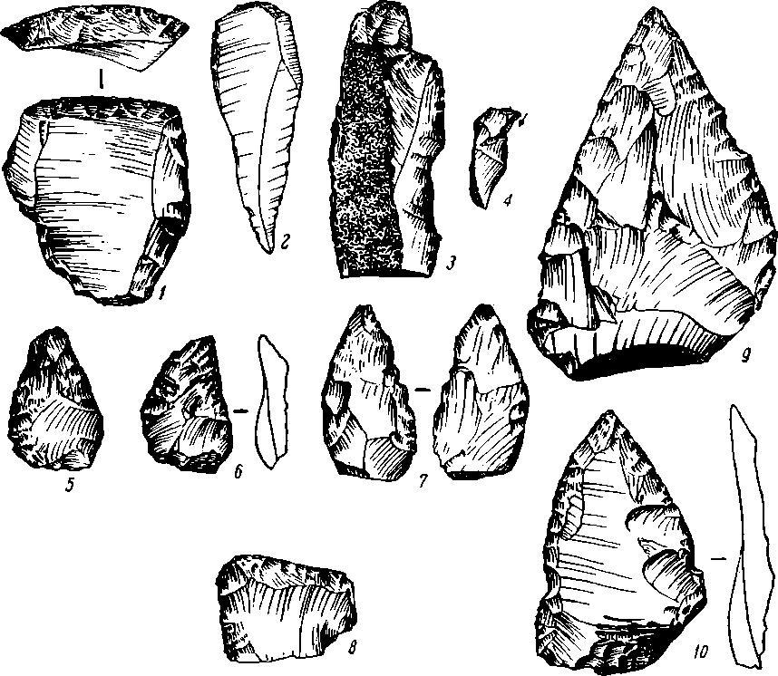 Рис. 32. Кремневый инвентарь из Волчьего Грота. 1 — 4 из 6 слоя; 5—8 из 7 слоя; 9 — 10 из 8 слоя.