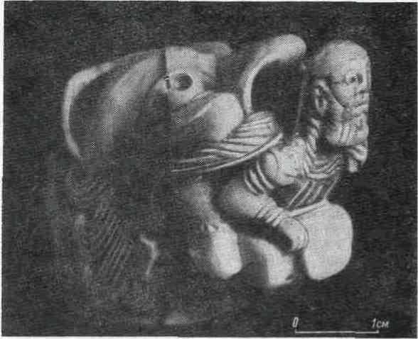 Голова льва. Кость. (Раскопки В. Р. Тарасенко.)