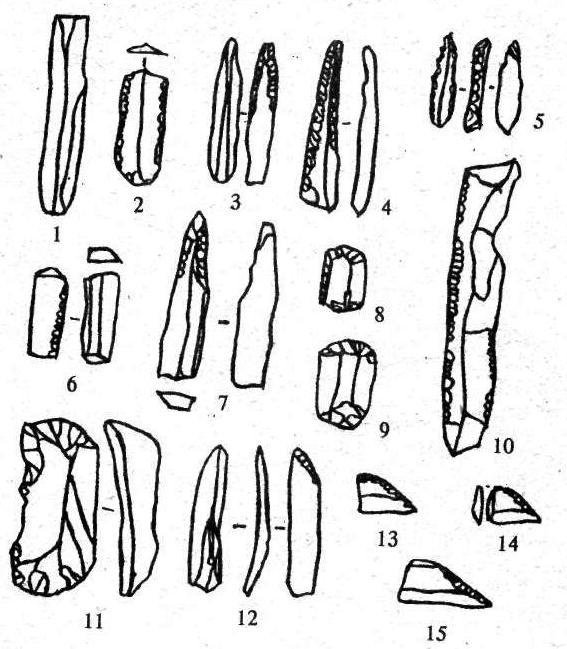 Рис. 10. Ориентация ретуши: 1, 2, 6, 10 - продольная; 3-5, 7, 12-15 - диагональная; 8, 9, 11 - поперечная.