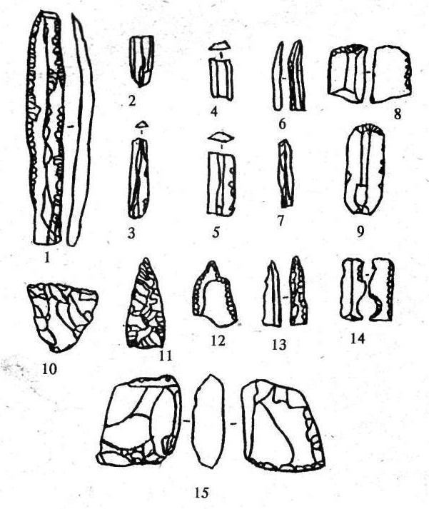 Рис. 8. Приемы вторичной обработки артефактов (1,8-15) и элементы характеристики вторичной заготовки-пластины (2-7): 1,8-15 — ретуширование; 2 — проксимальная часть пластины; 3 — пластина без дистальной части; 4 — се¬чение пластины; 5 — медиальная часть пластины; 6, 7 — пластины без проксимальной части