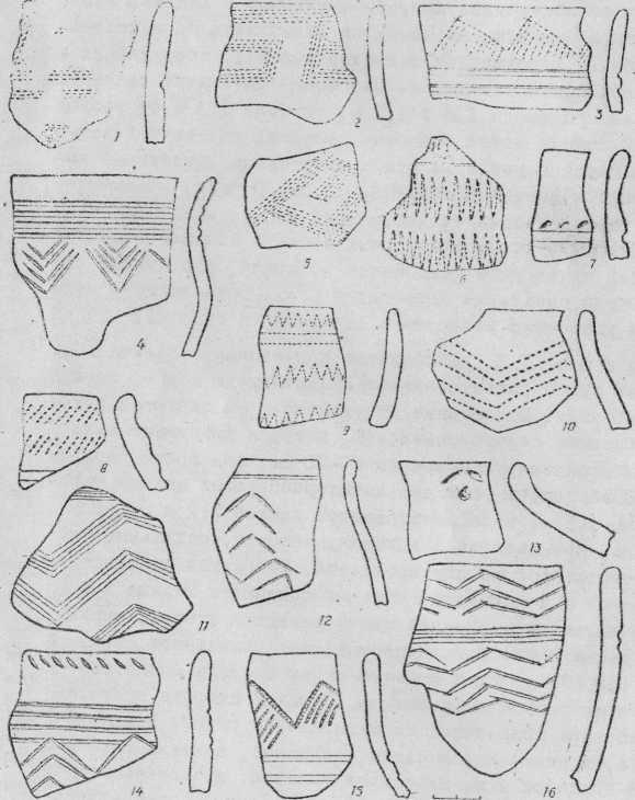 Рис. 2.Керамика первой группы