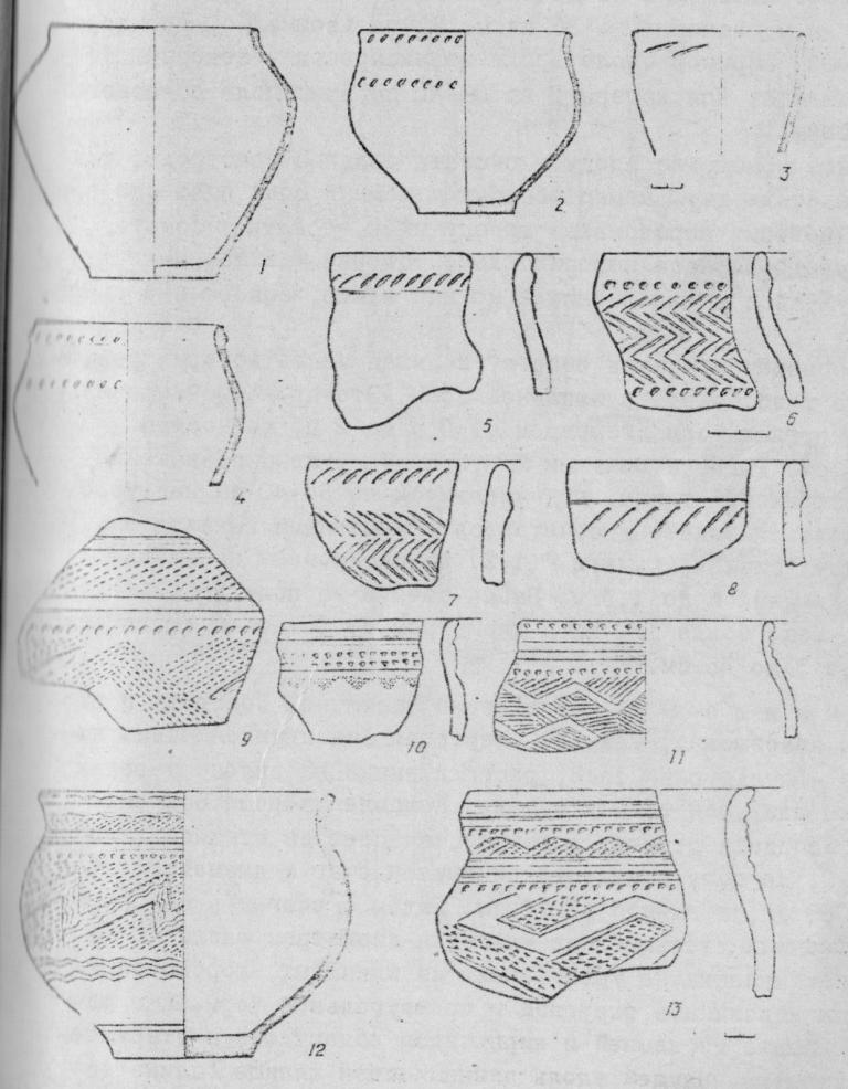 Рис. 3. Керамика II и III групп.