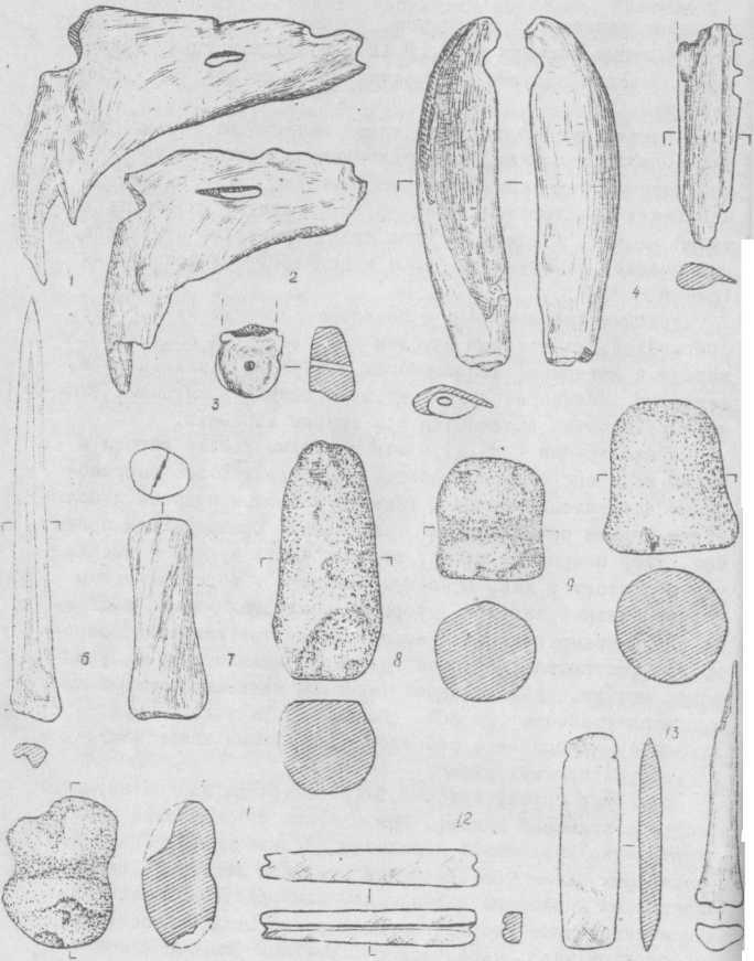 Рис.5. Поселение Явленка. Костяные и каменные орудия труда.  1-7, 14 - кость; 3-13-камень.