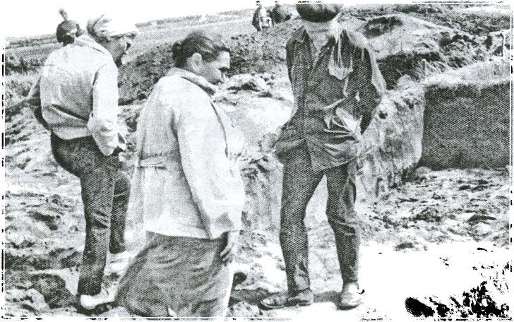 Поселение Петровка II, 1968 г. Я Я. Крижевская, С Я. Зданович, Г Б. Зданович
