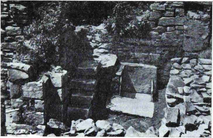 Рис. 11. Остатки крещальпи в северо-западном углу нартекса