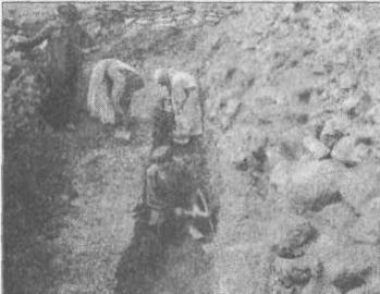 Рис. 143. Земляное городище. Раскопки И. И. Репникова, 1912 г.