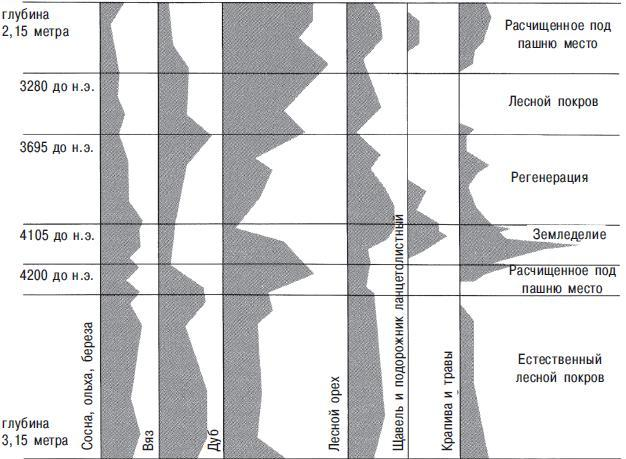 Рис. 13.10. Диаграмма пыльцы по данным из Северной Ирландии, подтверждающая воздействие земледельцев на доисторическую окружающую среду. Приблизительно в 4150 году до н. э., когда они впервые расчистили леса, показатели пыльцы деревьев резко упали. В то же самое время пыльца трав и полевых растений увеличивается. Далее земледельцы покидают эти поля, и леса восстанавливаются до новой вырубки в приблизительно 3280 году до н. э.